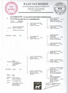 stamboom Nunu 001